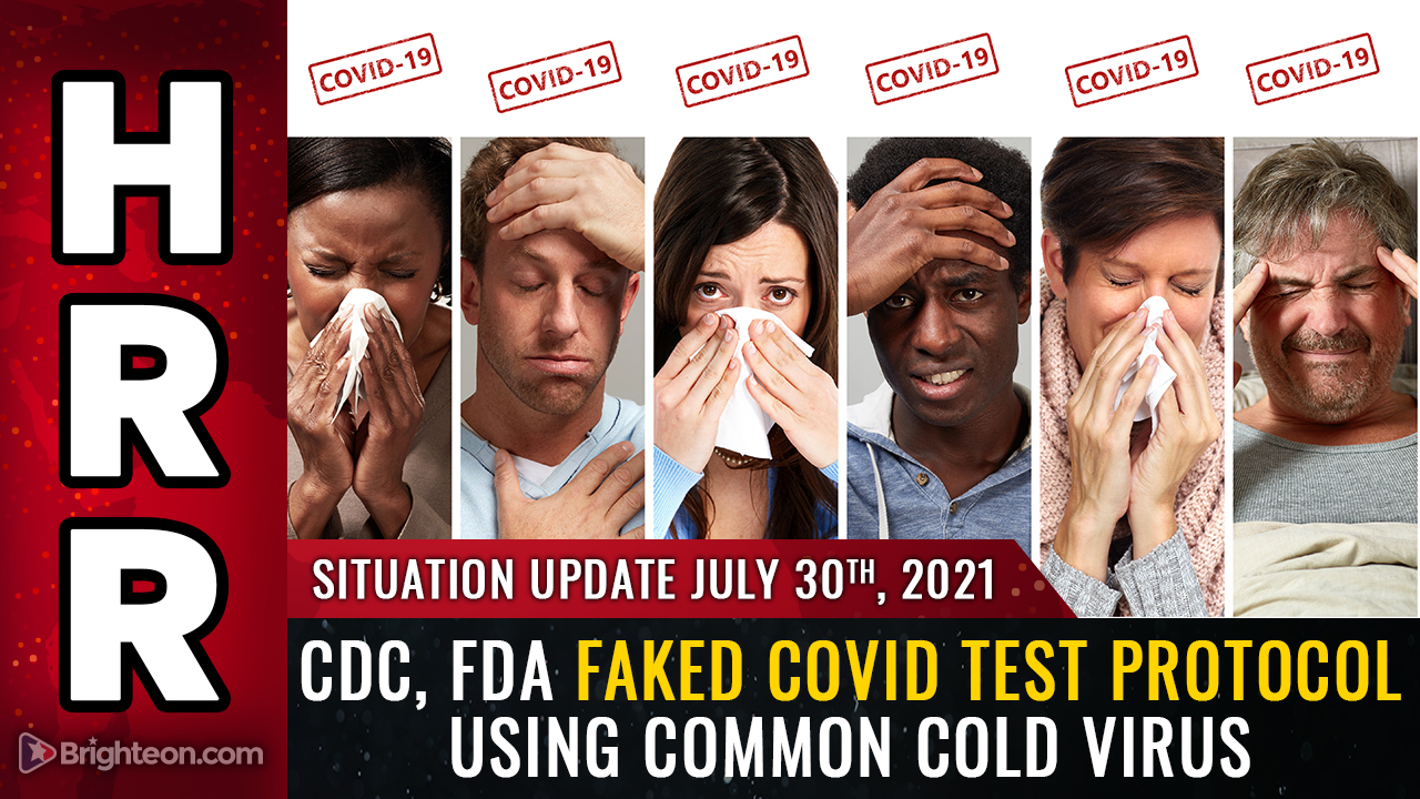 """Image: BREAKING: CDC, FDA faked """"covid"""" testing protocol by using human cells mixed with common cold virus fragments… PCR tests are merely detecting the common cold"""