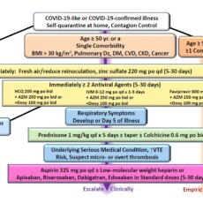 COVID-19: FDA's Negativism on HCQ Is Unfounded