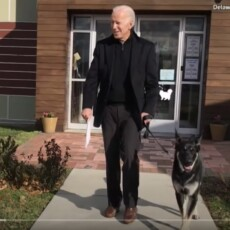 Doctors Say Biden Needs To Wear Walking Boot For 'Several Weeks' After Fall