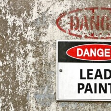 EPA Ordered to Protect Kids From Dangerous Levels of Lead in Homes, Schools