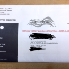 Gov. Gavin Newsom Tried To Own A Voter On Mail-In Ballot Fraud, But It Backfired