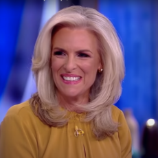 Grandma-Killer Gov. Andrew Cuomo Deflects From His Failures By Attacking Janice Dean's Career
