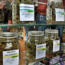 House passes landmark bill decriminalizing marijuana at federal level