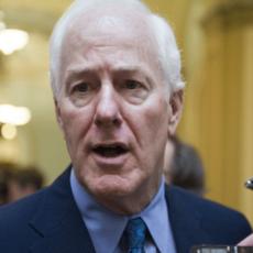 John Cornyn: Senate Should Pass Stand-Alone DACA Amnesty for Illegal Aliens