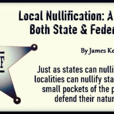 Local Nullification: A Way to Fight Both State & Federal Despots