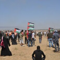 Palestinian Resistance Running in the New Legislative Elections Simulates Insanity