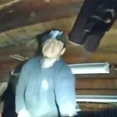 RAW VIDEO: Armed suspect killed in hail of gunfire by police in Utah