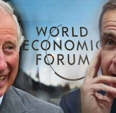 """The World Economic Forum (WEF) Knows Best – The Post-Covid """"Great Global Reset"""""""