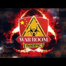 Watch Live — Steve Bannon Election War Room…